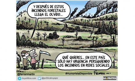 """Una ley de montes inapropiada y el """"negocio del fuego"""" en la sombra de los incendios que asolan España"""